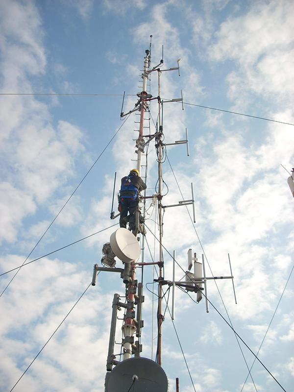 Telecommunication Services netico netico